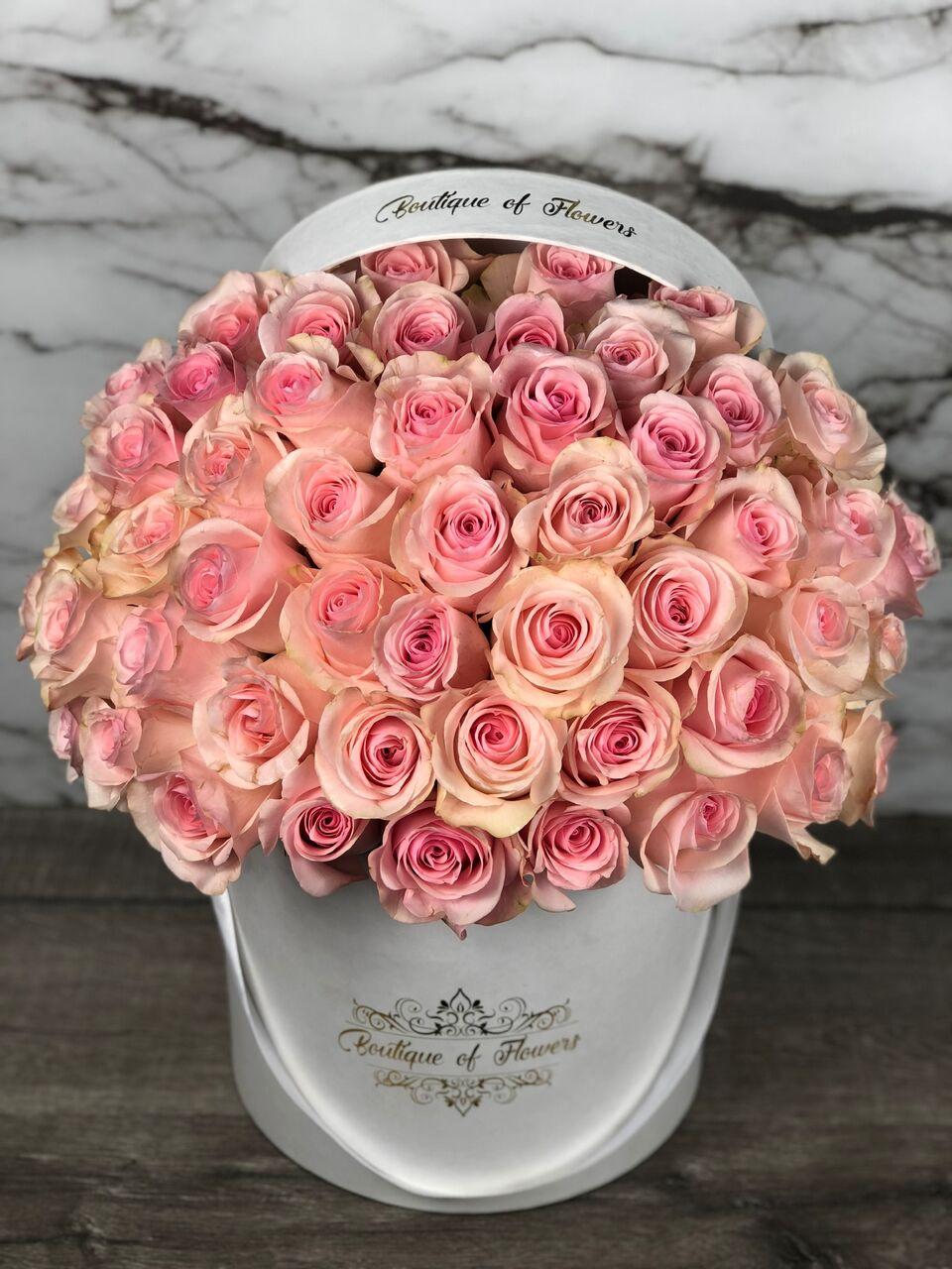 50 light pink rose round box